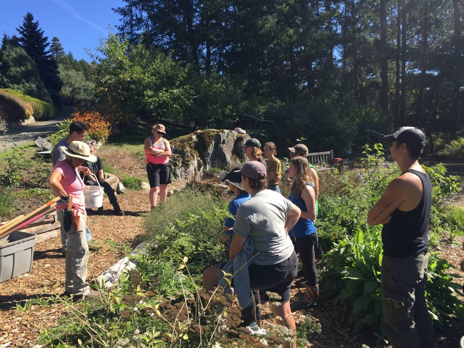 Students at the Pacific Horticulture College working in the Permaculture garden.