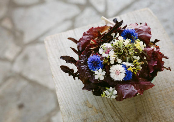 Edible flowers can turn any meal into something intriguing and magical. Photo: Kelly Brown