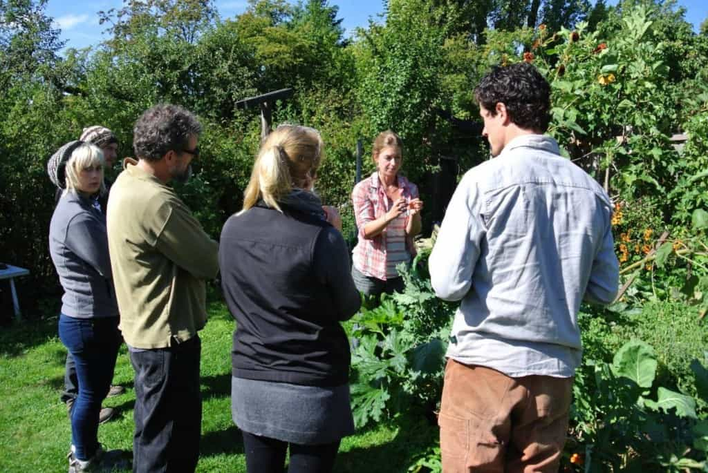 teaching permaculture