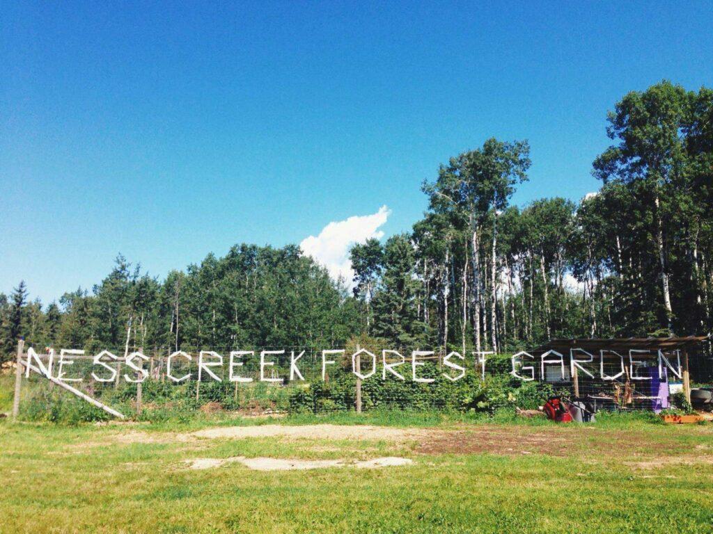 Food Forest Garden in Northern Saskatchewan
