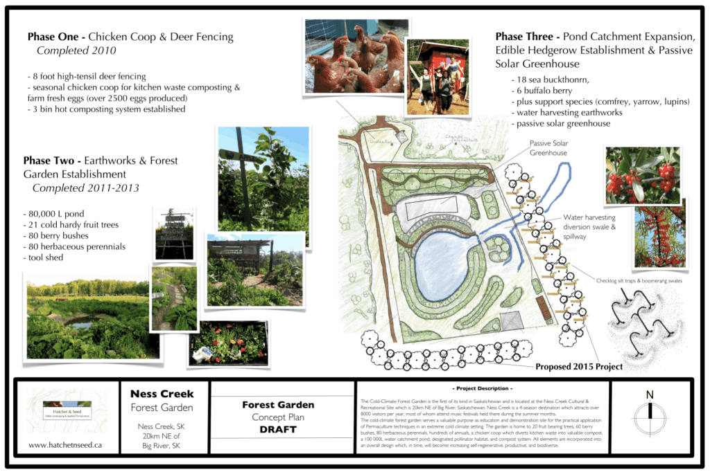 Ness Creek Concept