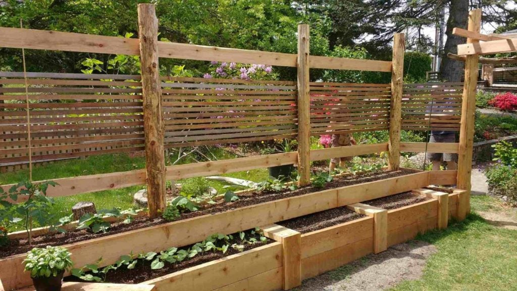 A very large raised bed garden room with supporting trellising.