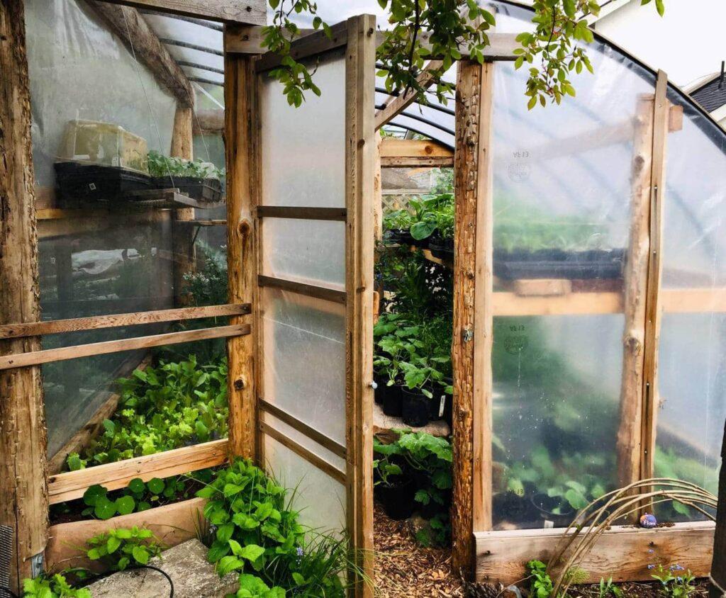 Hatchet Seed Edible Landscape Designers Builders Victoria Bc